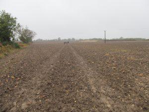 Huge muddy ploughed field of misery!