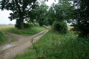 The Peddars Way near Harpley Dams