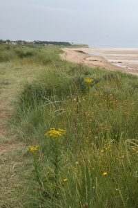 The cliffs at Hunstanton- in the distance