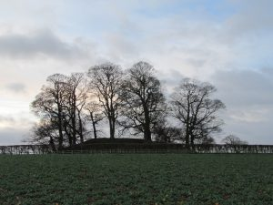 Motte and Bailey at Bothamsall
