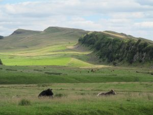 Looking back over the crags