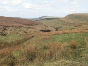 Wild moorland
